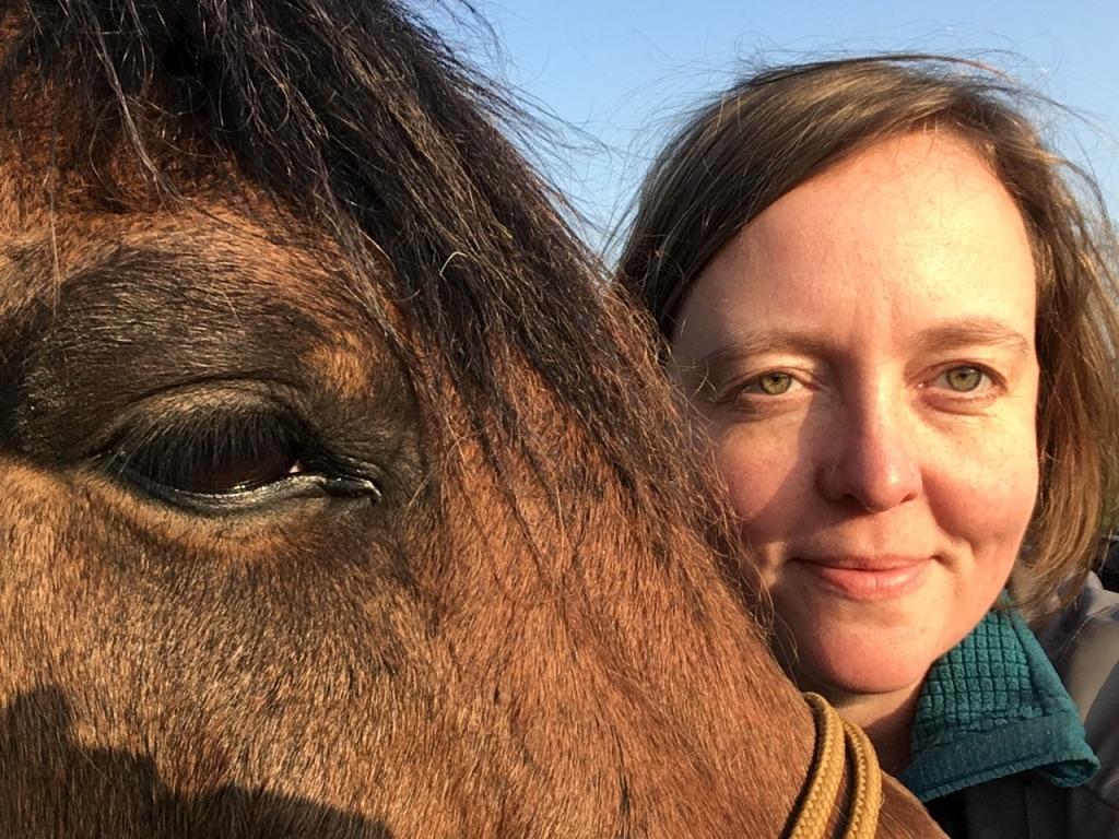 Kuddebeest Coaching met paarden