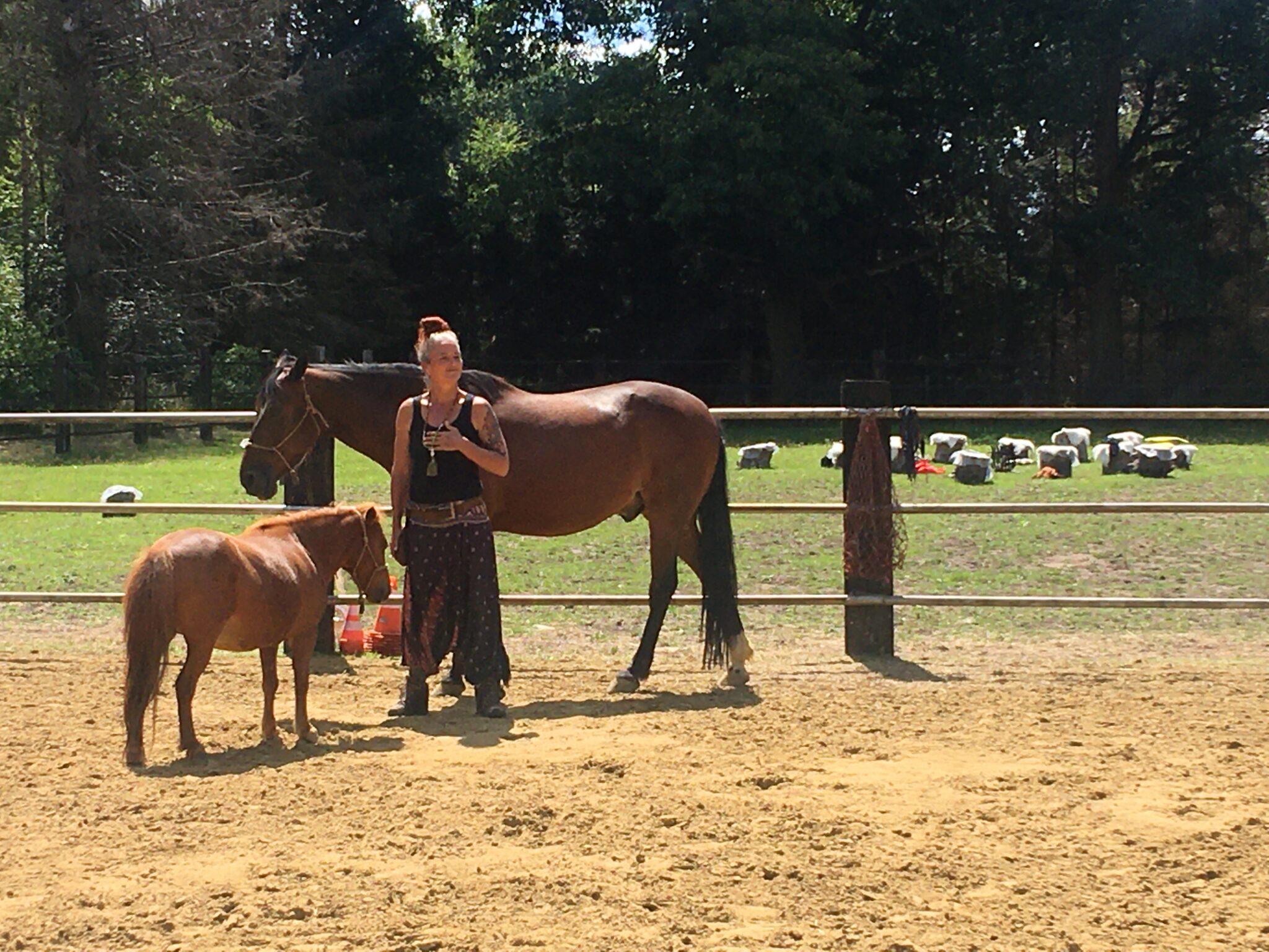 sjamanistisch coachen met paarden